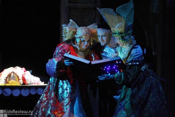 СКАЗКА ФЕЙ, или спящая красавица (Детские). Театр Кукол. Билеты в наличии: 370.00 руб. Свободных мест: 2
